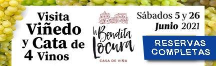 Visitas Viña y cata de vinos